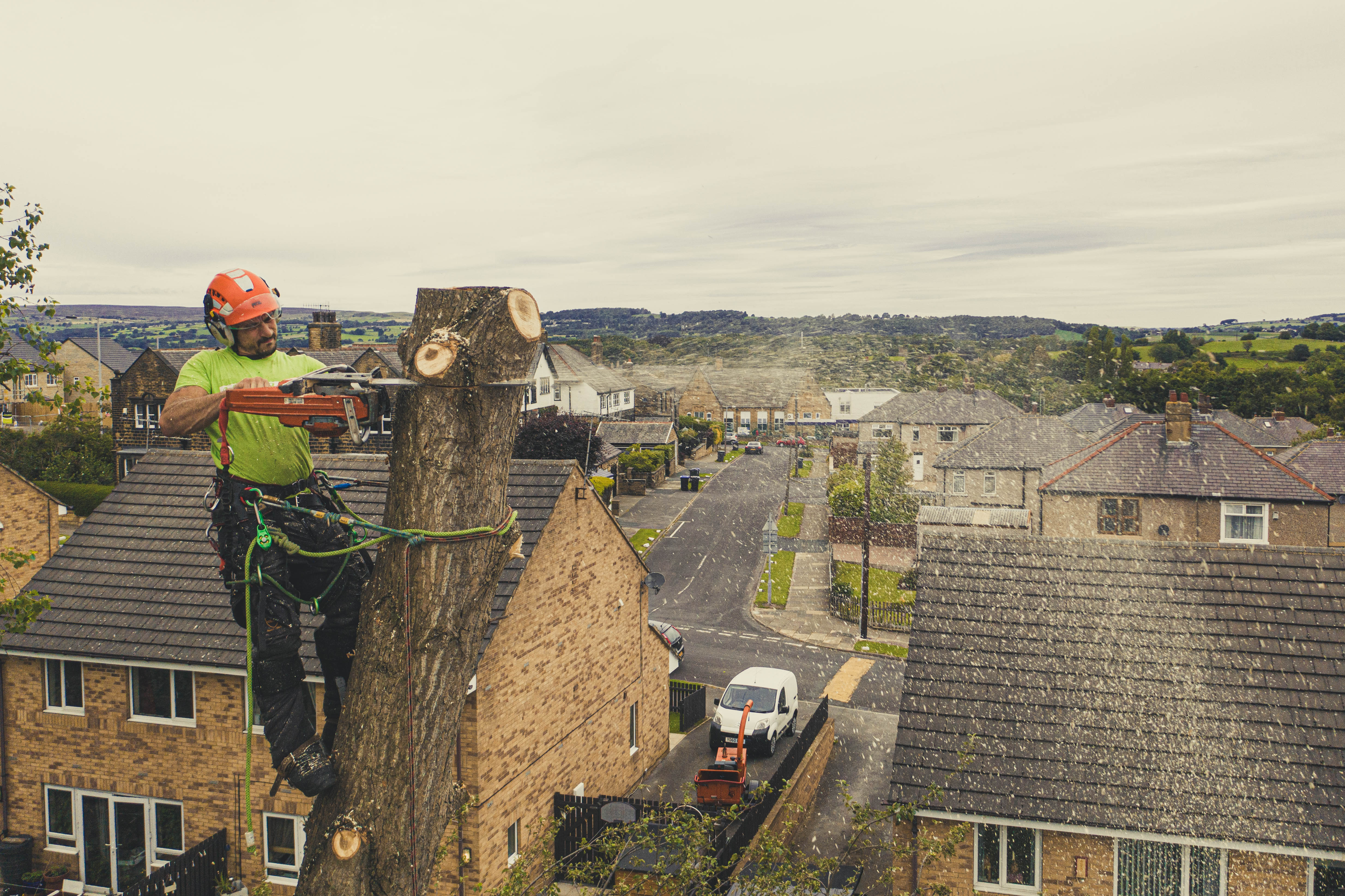 West-Yorkshire-Tree-Dismantle-4