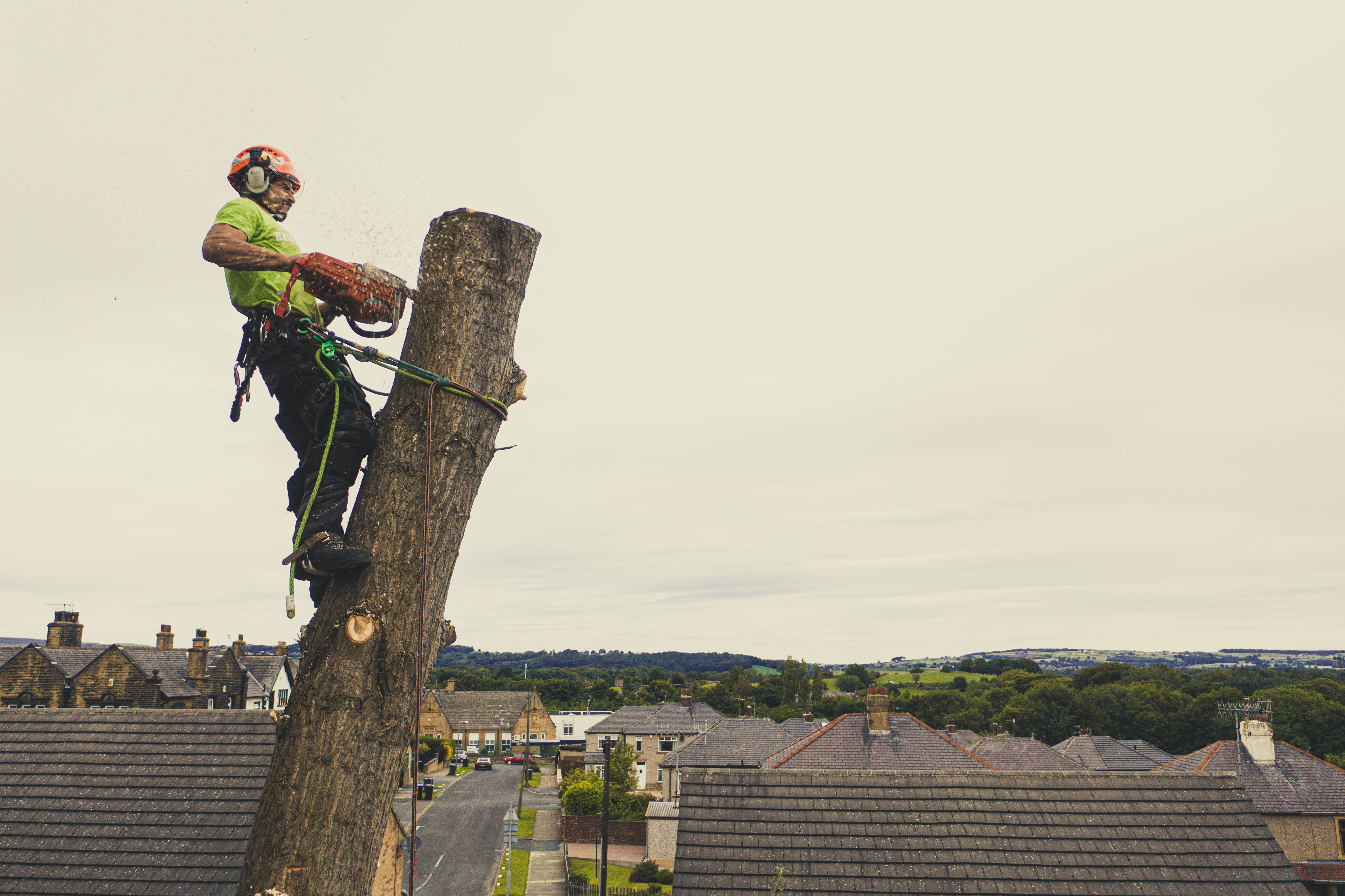 West-Yorkshire-Tree-Dismantle-5