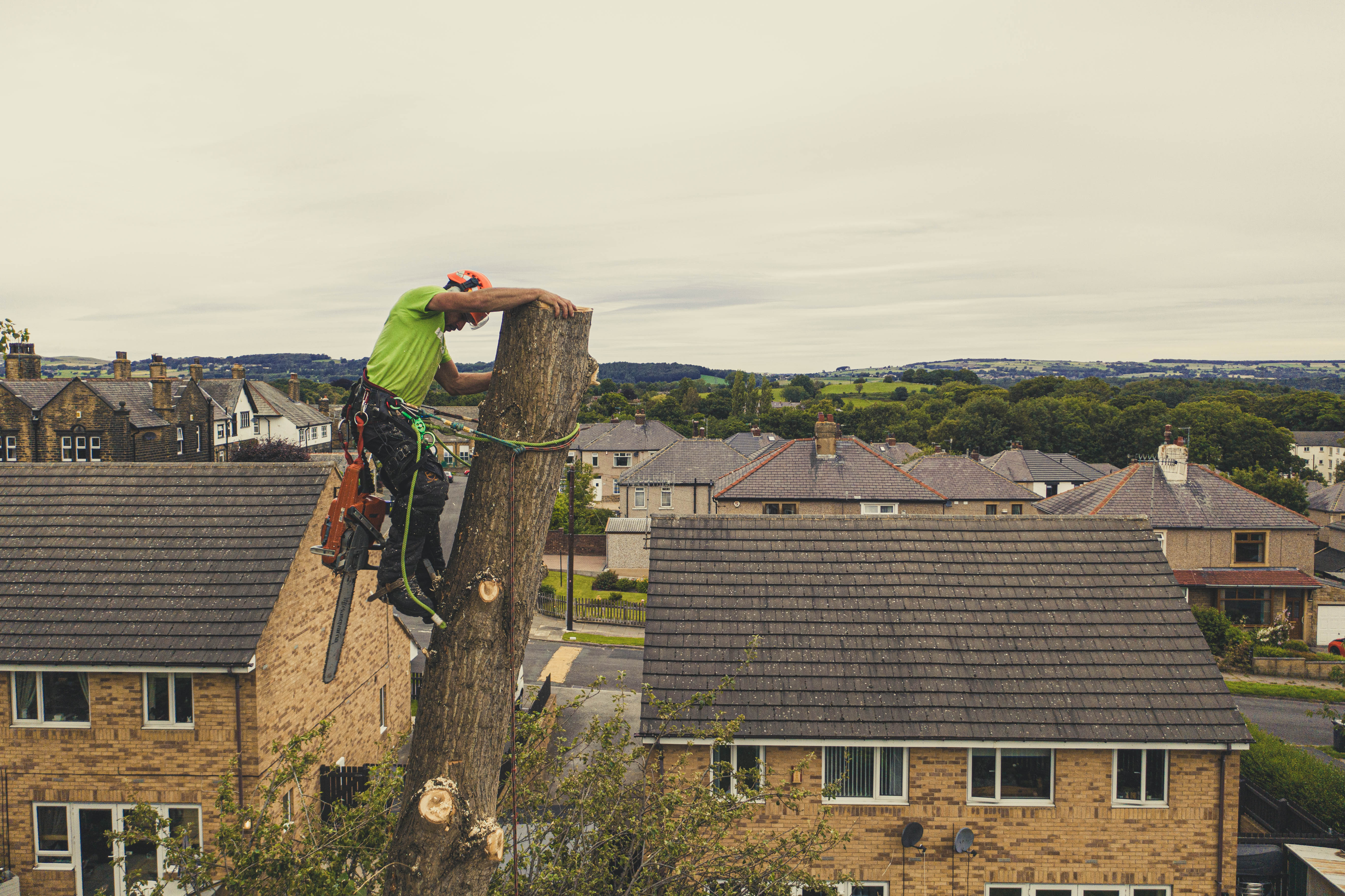 West-Yorkshire-Tree-Dismantle-7