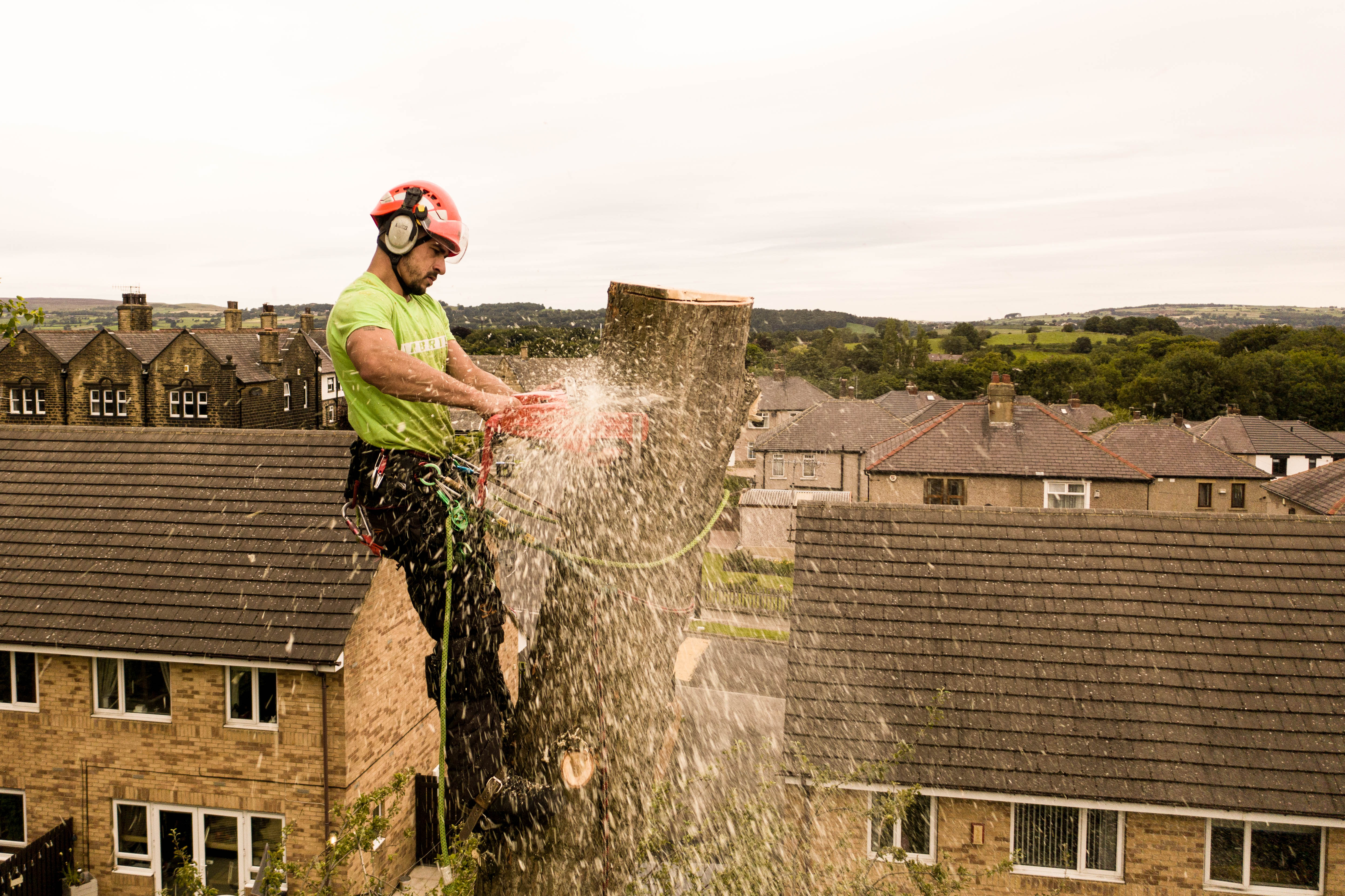 West-Yorkshire-Tree-Dismantle-8